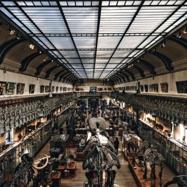 Escape Game in a museum