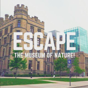 Mini Escape Games - Escape Manor & Museum of Nature